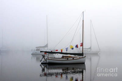 Photograph - Cat Boat by Butch Lombardi
