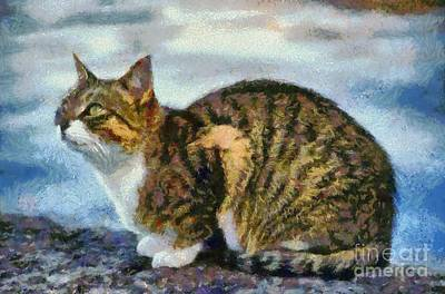 Painting - Cat By The Seaside by George Atsametakis