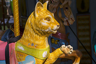 Spinning Photograph - Cat Carrousel Ride by Garry Gay