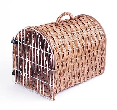 Pet Care Photograph - Cat-carrying Basket by John Daniels