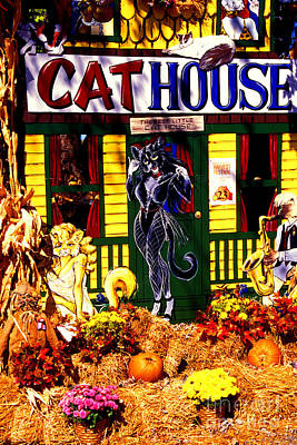 Photograph - Cat Cat House by Paul W Faust -  Impressions of Light