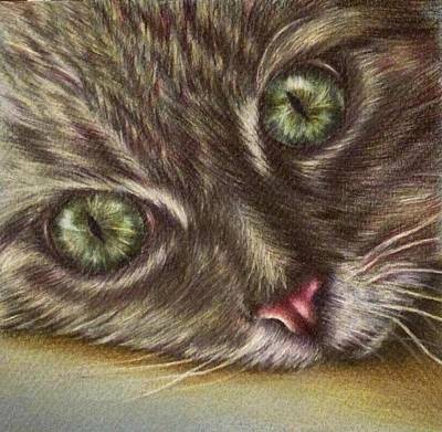 Watercolor Pet Portraits Drawing - Cat Component by Lisa Marie Szkolnik
