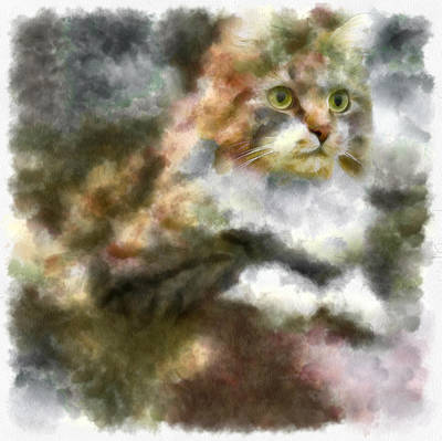 Pets Art Digital Art - Cat Dam Serious by Yury Malkov