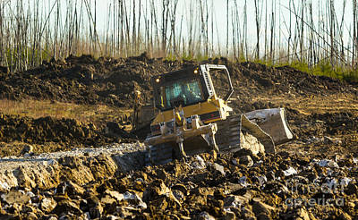 Artist Working Photograph - Cat Dozer Playing In The Mud by Alanna DPhoto