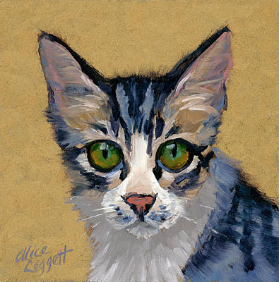 Painting - Cat Eyes by Alice Leggett