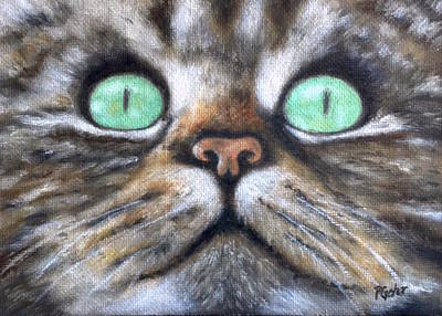 Painting - Cat Eyes by Dr Pat Gehr
