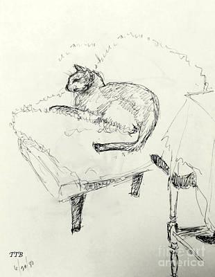 Cat Heaven Art Print