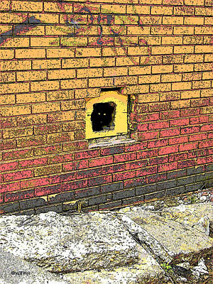 Photograph - Cat In A Hole In A Wall by Rebecca Korpita
