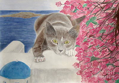 Wall Art - Photograph - Kitty In Santorini  by Cybele Chaves