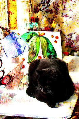 Photograph - Cat In The Art Studio by Marie Jamieson