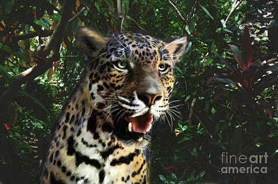 Digital Art - Cat In The Rainforest by Lisa Redfern