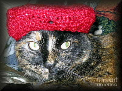 Pyrography - Cat In The Red Hat by Oksana Semenchenko