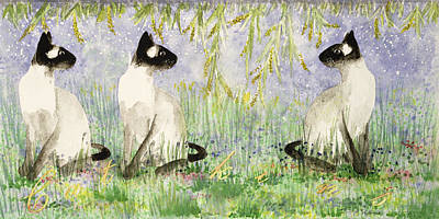 Siamese Photograph - Cat Kins Wc On Paper by Suzi Kennett