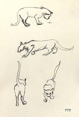 Cat Lines Art Print