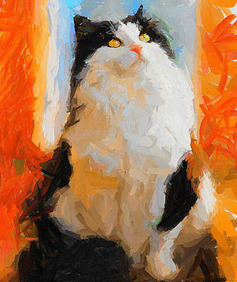 Cat Looking Up Art Print by Yury Malkov