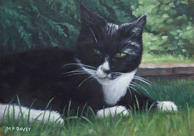 cat Print by Martin Davey