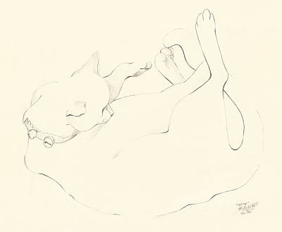 Calligraphic Drawing - Cat Nap by Melinda Dare Benfield