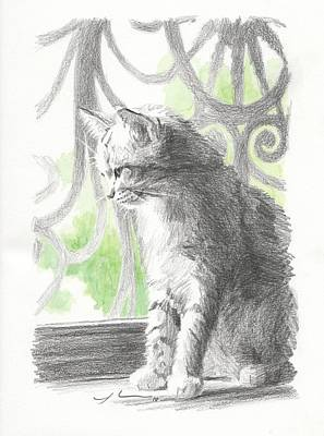 Screen Doors Drawing - Cat Near Screen Door Watercolor Portrait by Mike Theuer
