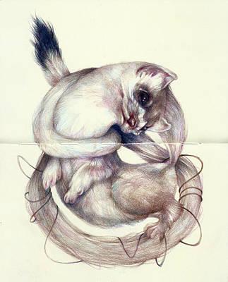 Beuty Digital Art - cat by Noahlakcus