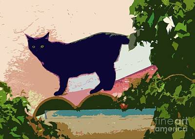 Photograph - Cat On A Hot Tile Roof by Barbie Corbett-Newmin