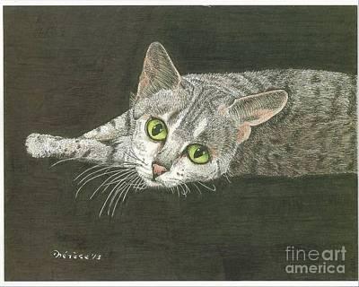 Cat On Black Art Print