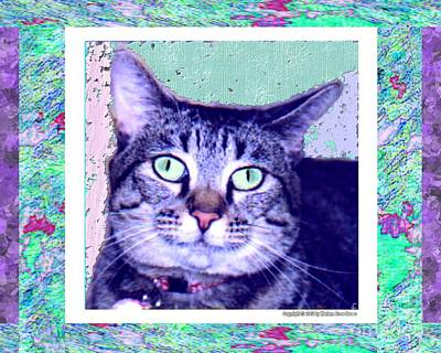 Photograph - Cat Pet Portrait by Marlene Rose Besso