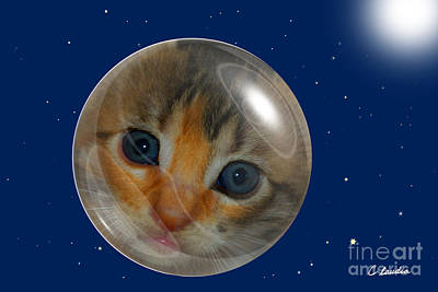 Photograph - Cat Planet by Claudia Ellis