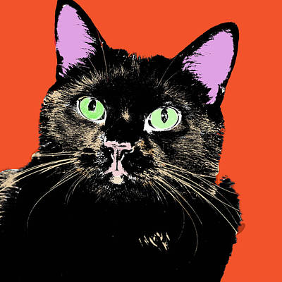 Digital Art - Cat Pop Art by Susan Stone