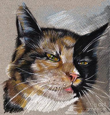Drawing - Cat Portrait Green Eyes by Daliana Pacuraru