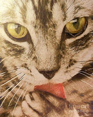 Fish-eye Look Painting - Cat Portrait by Odon Czintos