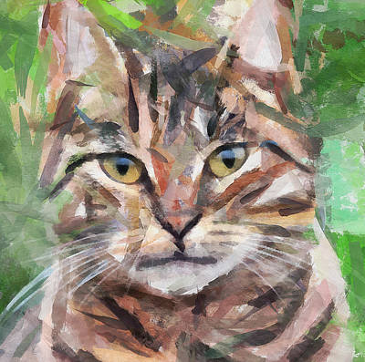 House Pet Digital Art - Cat Selfy by Yury Malkov