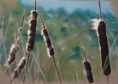 Cat Tail Painting - Cat Tails by Christopher Reid