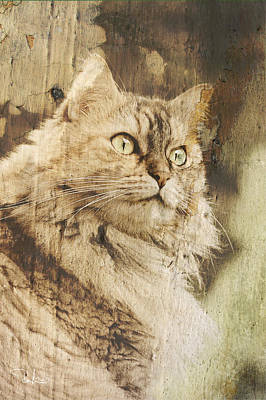 Cat Texture Portrait Art Print