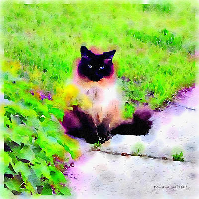 Digital Art - Cat Watching by Donald and Judi Hall
