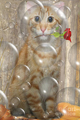 Cat With Bubbles Art Print by Jo Collins