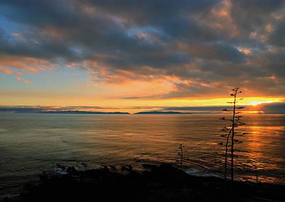 Photograph - Catalina Island Sunset by Joe Schofield