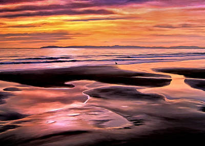 Painting - Catalina Sunset by Michael Pickett