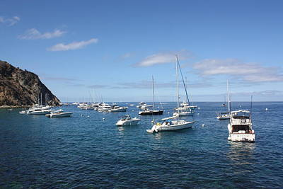 Photograph - Catalina Yachts By Cliff by Daniel Schubarth