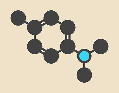 Polymer Photograph - Catalyst Molecule by Molekuul