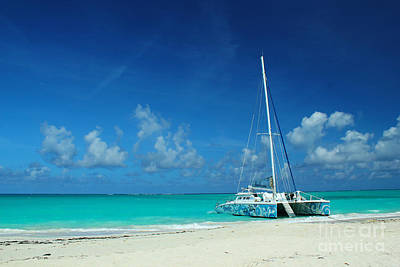 Photograph - Catamaran In Caribbean by Robyn Saunders