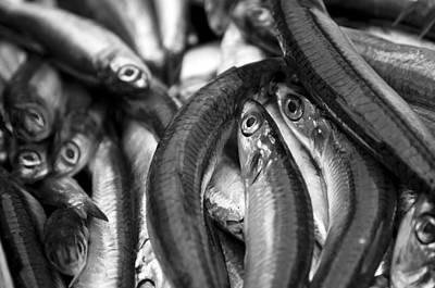 Catania's Fish Market Print by Gabriele Ciulli
