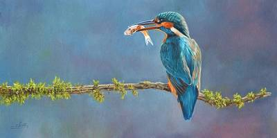 Kingfisher Wall Art - Painting - Catch Of The Day by David Stribbling