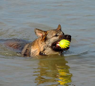 Catch The Ball Original by Stephanie Kendall