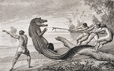 Catching An Alligator With Lasso, From The Amazon And Madeira Rivers, By Franz Keller, 1874 Art Print by American School