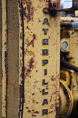 Photograph - Caterpillar by Trent Mallett