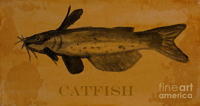 Catfish Drawing - Catfish Plaque by R Kyllo