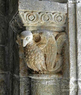 Photograph - Cathedral Bird Gargoyle by Val Miller