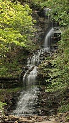 Photograph - Cathedral Falls by Harold Rau
