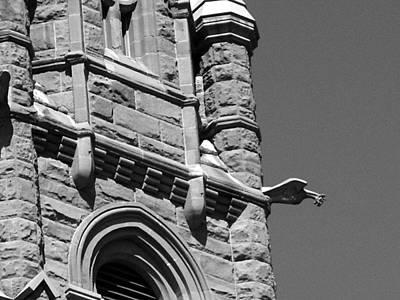 Photograph - Cathedral Of The Madeleine Gargoyle by Tarey Potter