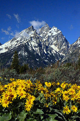 Photograph - Cathedral Peaks Verticle by Ken Smith